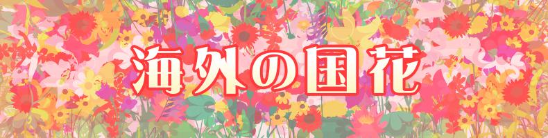 海外の国花